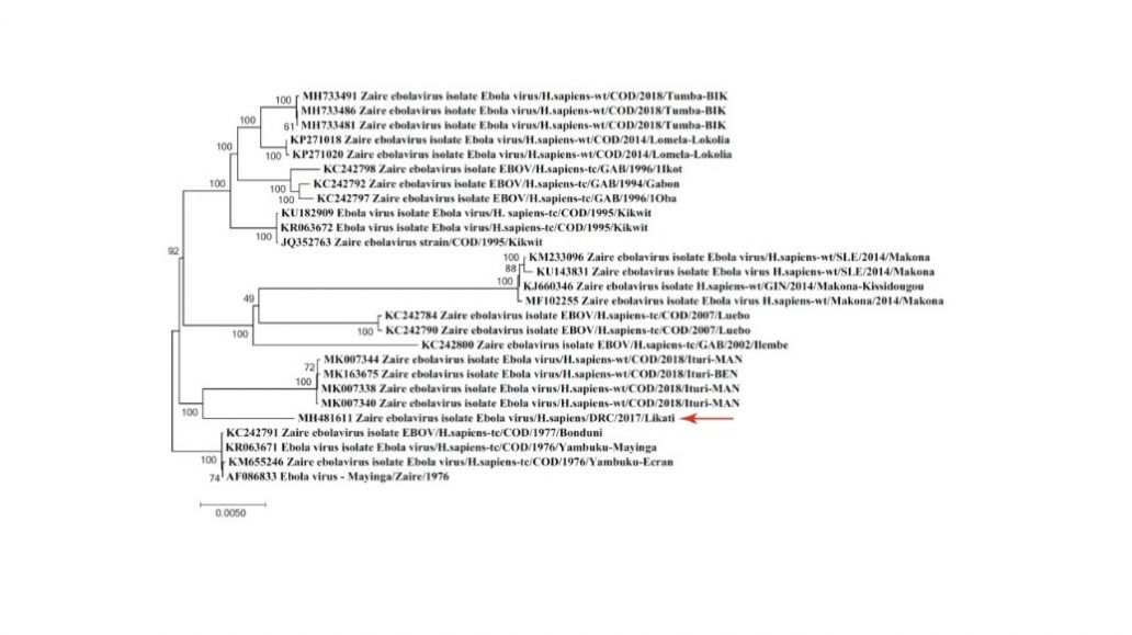 Joan ebolavirus sequencing